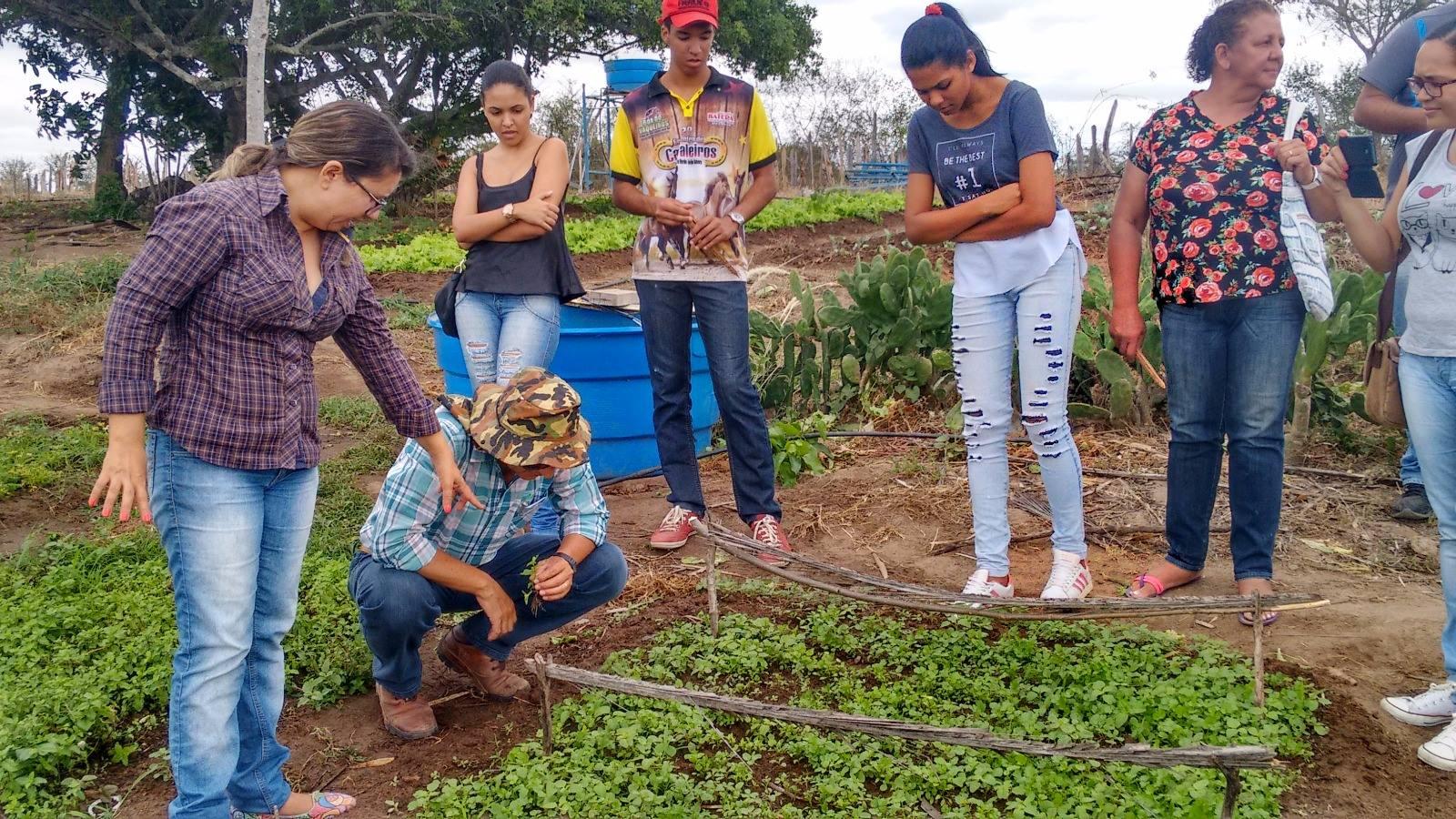 Aula do curso FIC de Manejo de Irrigação no Campus Itaberaba.